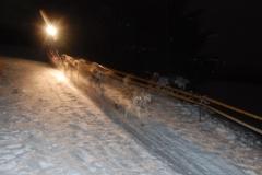 sedivackuv-long-sled-dog-race-19