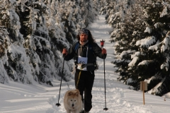 sedivackuv-long-sled-dog-race-211