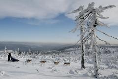 sedivackuv-long-sled-dog-race-22