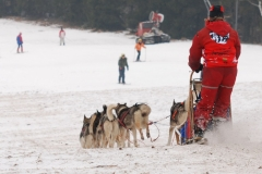 sedivackuv-long-sled-dog-race-27