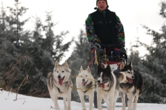 sedivackuv-long-sled-dog-race-30