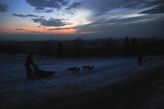 sedivackuv-long-sled-dog-race-38