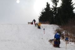 sedivackuv-long-sled-dog-race-45