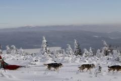 sedivackuv-long-sled-dog-race-71